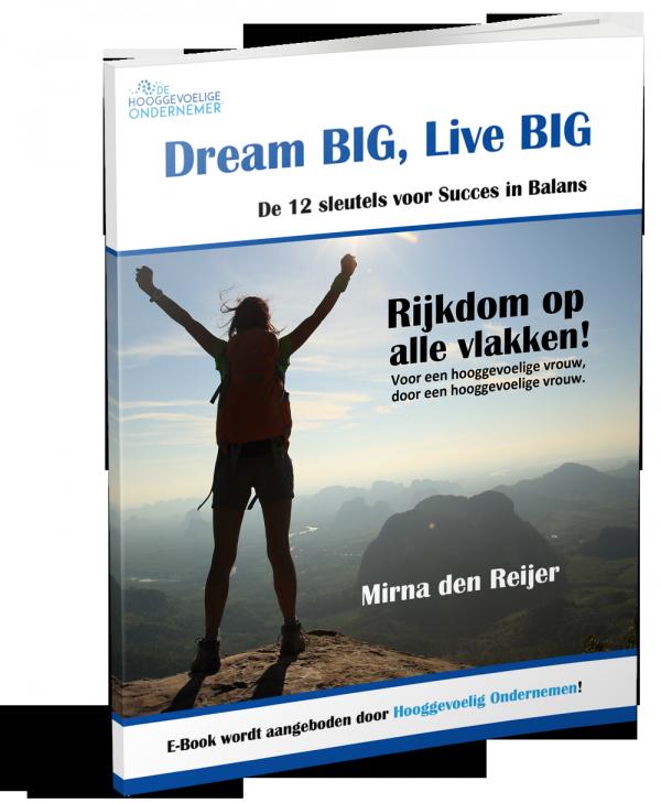 ebook_cover_dreambig_livebig