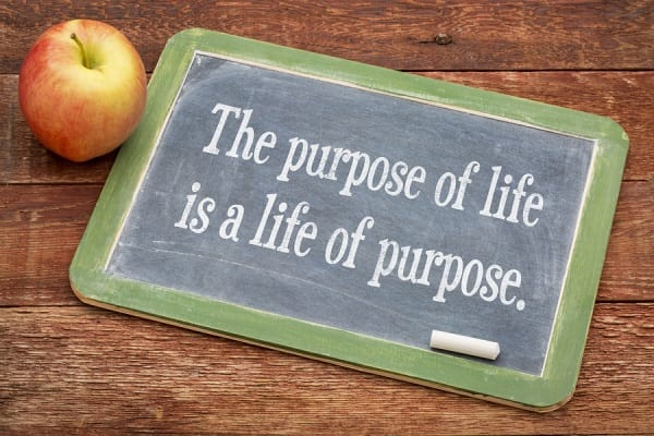 bigstock-the-purpose-of-life-is-a-life--77408354
